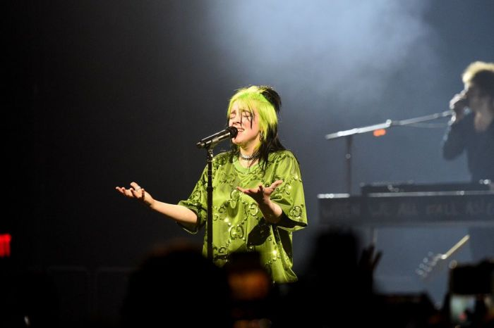 "Billie Eilish performs live on stage at Billie Eilish ""Where Do We Go?"" World Tour Kick Off - Miami at American Airlines Arena"
