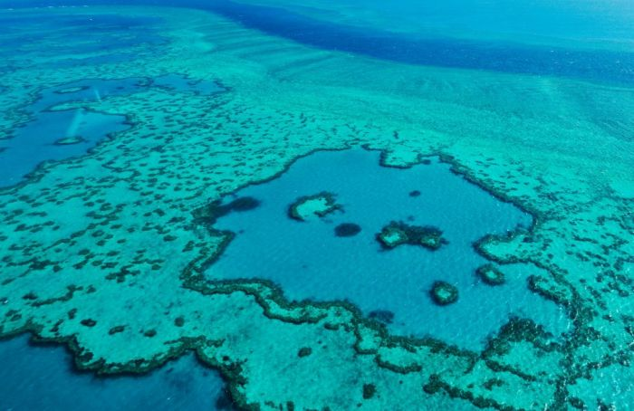 Aerial view of coral banks, reef systems and the pacific ocean on November 20, 2015 in Great Barrier Reef, Australia