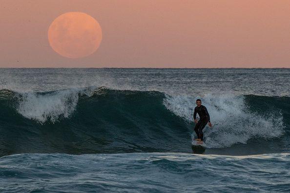 surfer super blood moon
