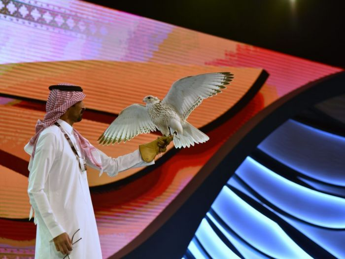 Saudi Arabia Falcon